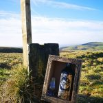 Forest Whisky Gift Box